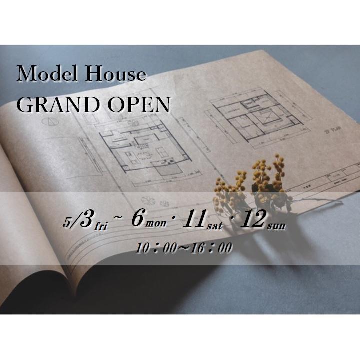 Model Open.jpg