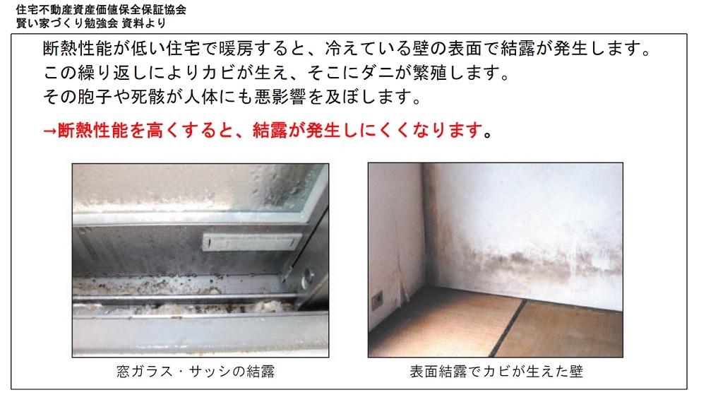 kabi_photo.jpg